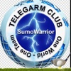 SumoWarrior